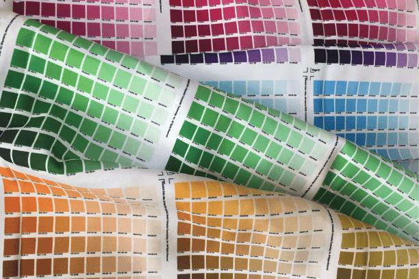 kolory grafiki